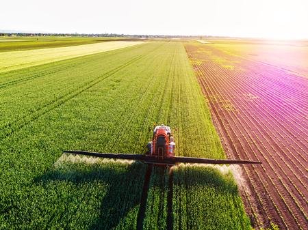 Agricoltore che spruzza campo di grano verde