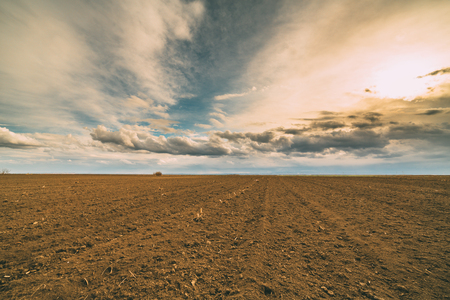 Agricultural landscape, arable crop field. Arable land is the land under temporary agricultural crops capable of being ploughed and used to grow crops.