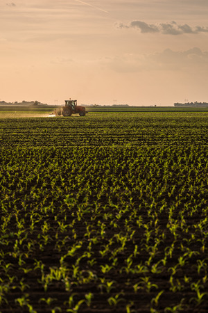 Farmer spraying soybean crops