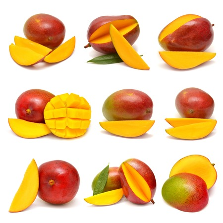 mango: Collection of mango isolated on white background