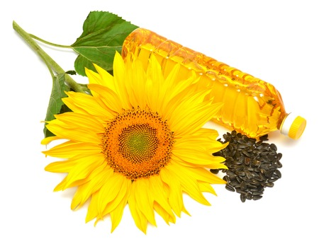 Sunflower oil, sunflower and seeds isolated on white background photo