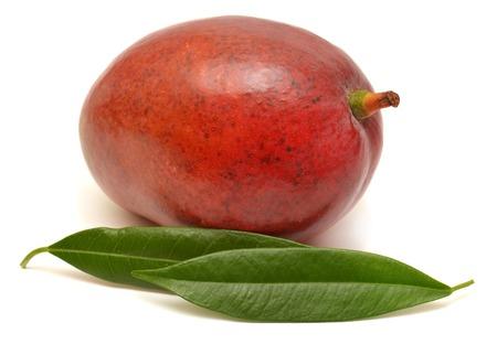 Mango with leaf isolated on white background photo