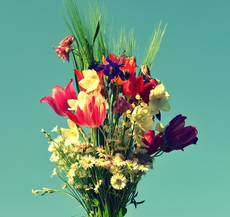Flowers against the sky photo