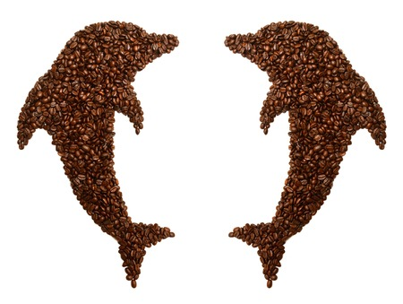 Collection dolphin is laid out coffee beans isolated on white background photo