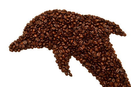 Dolphin is laid out coffee beans isolated on white background