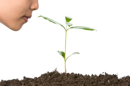 The small plant will grow into big tree in the future and they will provide us the oxygen in the air we breathe every single time. Just want to say to all nations that we all have responsible of the nature, in my country we have program that each citizen