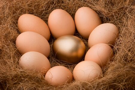 One golden egg between nine ordinary egg in nest, describing special person among the other or any methapors that fit. Be different. Stock Photo - 3806872