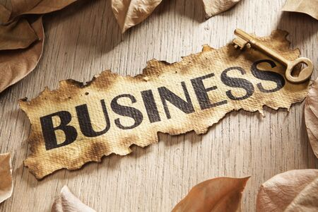 Business key concept using burnt paper with word business printed on it and a goldn key surrounded by dried leaves Stock Photo - 5557726