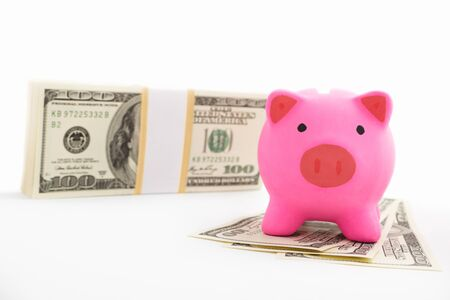 Pink piggy bank and dollar bills on white background Stock Photo - 12750916