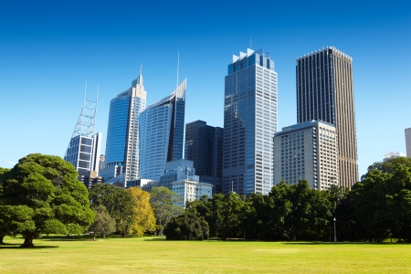 Park in Sydney with skycrapper building on CBD area as background