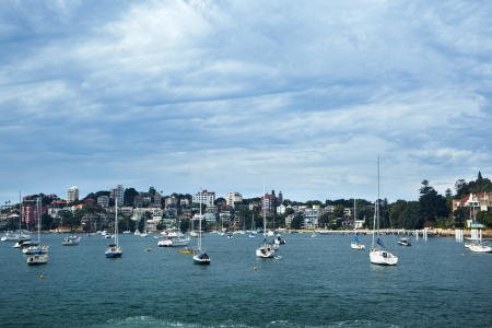 manly: Manly beach area with lots of yatch and residential area on background