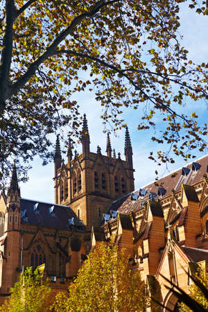 sideway: Sydney, Australia - April 20th, 2012 : St. Marys Cathedral sideway on Autum season