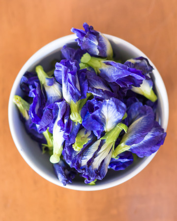 cup of violet purple color flowers of butterfly Pea, Asian pigeonwings , photo