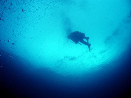 Diver in Miyako      photo