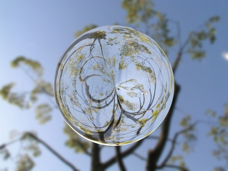 glass ball: Crystal