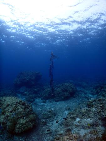 Under water rays in  Kho Ishigaki