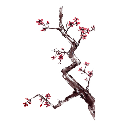 decorative traditional japanese hand painted watercolor cherry blossom tree branch