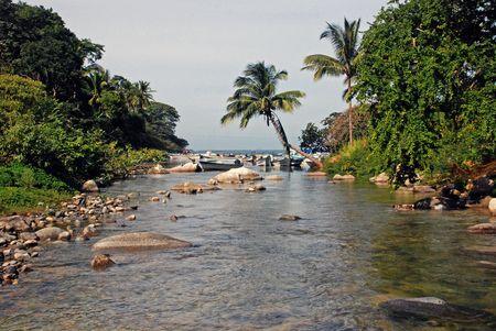 horcones: Jungle Horcones fiume incontra Oceano Pacifico, a Boca de Tomatlan, una palma frange baia, a sud di Puerto Vallarta, Jalisco, Messico.
