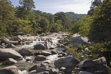Jungle river Horcones near the Pacific Ocean, south of Puerto Vallarta