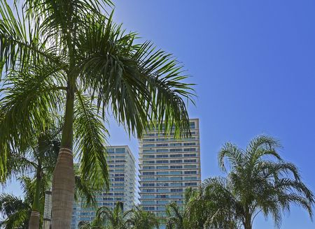 Residential high-rises with palm trees in Puerto Vallarta, Mexico Stock Photo