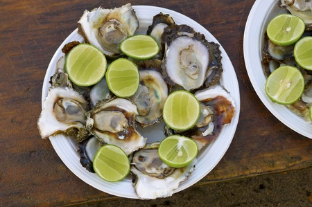 Plate of raw oysters with sliced limes, served in Puerto Vallarta, Mexico Stock fotó - 8379722