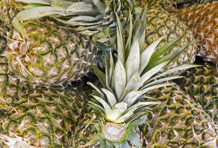 Whole pineapples in a market, suitable as background