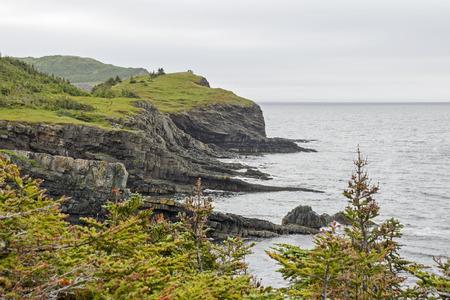 trinity: Rugged Trinity Bay coast in Newfoundland, Canada