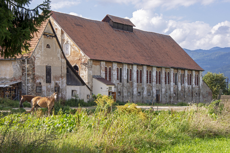 Barn with horses in foreground, Styria, Austria