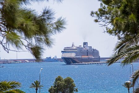 Cruiseship docked in Palma de Mallorca, tree branches in foreground