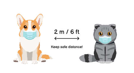 Keep the distance two meters or six feets. Coronavirus infection spreading prevention information sign with animals wearing protective face masks. Pembroke welsh corgi and scottish fold cat