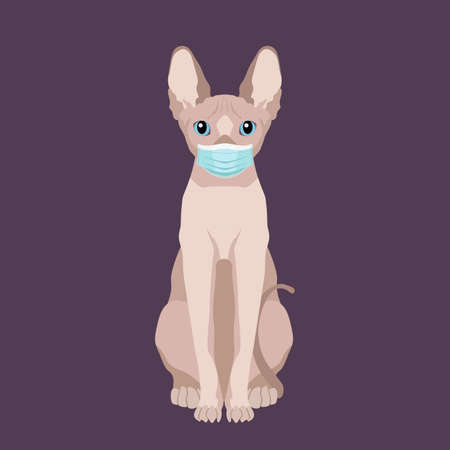 Vector portrait of sphynx hairless cat wearing protective face mask