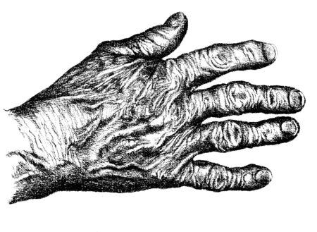 Hand drawn hand of an elderly woman Illusztráció