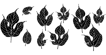 Solid art illustration of stylized mulberry leaves Illusztráció