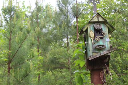 intruder: Funky old birdhouse with snake looking out