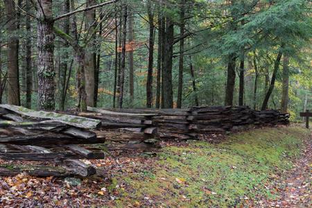 Gespleten spooromheiningsmening van kant met bos erachter op een natte herfstdag, horizontaal aspect Stockfoto