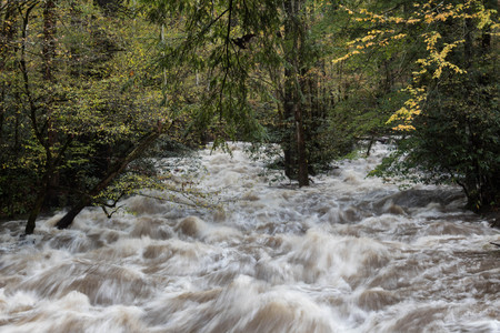 Heavy flooding on a river in the Great Smoky Mountains in autumn, horizontal aspect Reklamní fotografie - 90170426