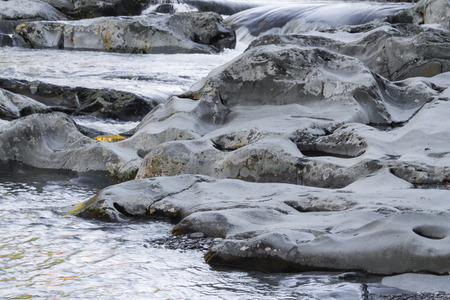 Pocket of water in a rock with gold reflections of fall foliage, horizontal aspect