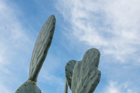 Background of green cactus shapes against a blue and white sky, copy space, horizontal aspect Stock Photo