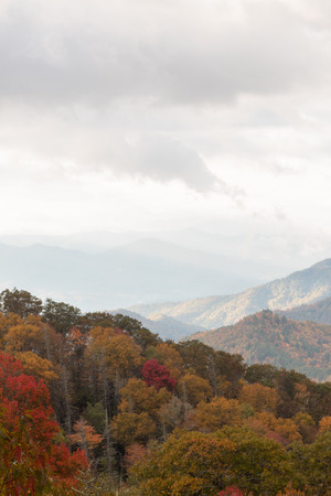 Vista view of Great Smoky Mountains on cloudy fall day, trees in autumn colors, vertical aspect