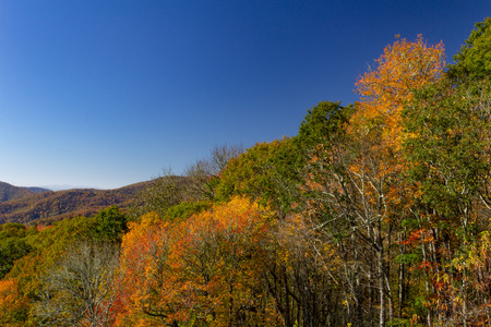 View of bright autumn foliage on mountains, horizontal aspect Reklamní fotografie