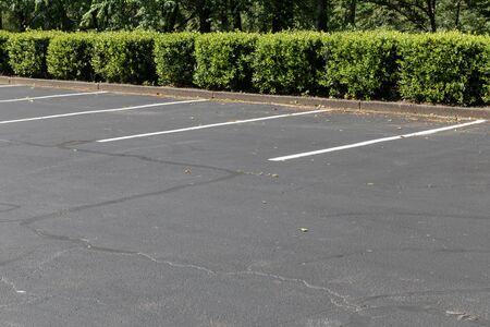 Empty lined asphalt parking lot bordered by bushes and trees, horizontal aspect Stockfoto