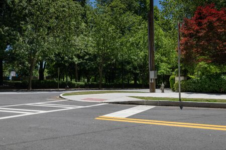 Intersection of two streets in an urban city landscape, park with trees and bushes, creative copy space, horizontal aspect