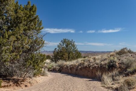 Path cut into rock and sand of Chihuahuan Desert, trees and dry grass before distant mountains, blue sky copy space, horizontal aspect