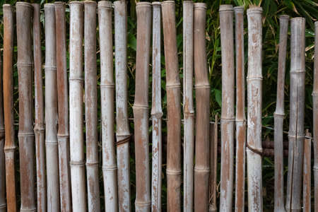 Nature background of old bamboo fence in shades of brown, creative copy space, horizontal aspect