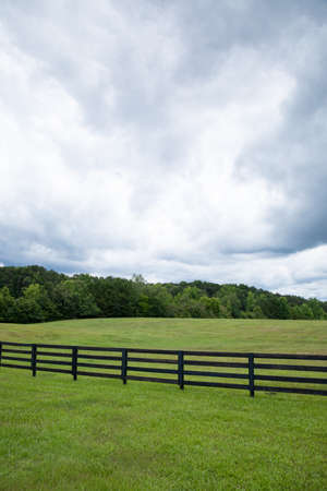 Emerald green meadow with horizon tree line, black rail fence and turbulent clouds, creative copy space, vertical aspect