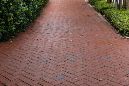 Long brick sidewalk in a herringbone pattern bordered on the sides with low groundcover and bushes, low perspective view, horizontal aspect