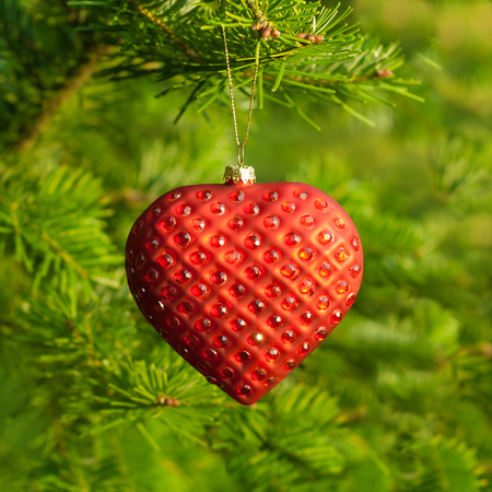 weighs: Christmas ornaments on a Christmas tree heart weighs