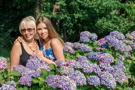 55 60: Two women of different generations standing near flowers hydrangeas. Mother and daughter. Grandmother and granddaughter.