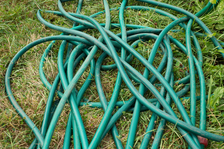 Water hose lying on the grass in the garden 版權商用圖片