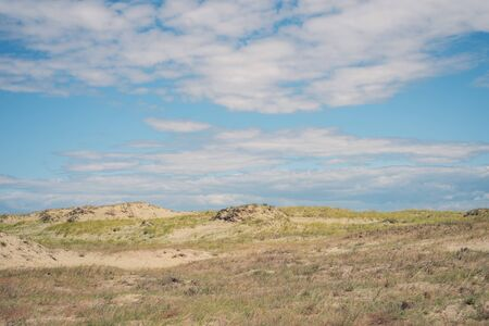 Landscape of the Curonian Spit Stock Photo